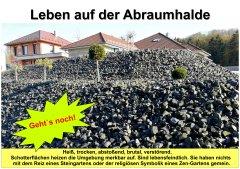 Gartenkultur15_Leben_auf_der_Abraumhalde_klein.jpg