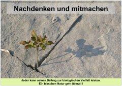 Gartenkultur17_Nachdenken_und_mitmachen_klein.jpg