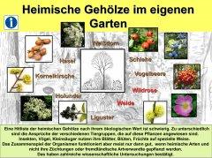 Gartenkultur20_Gehlze_klein.jpg