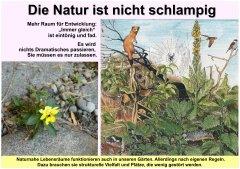 Gartenkultur2_Die_Natur_ist_nicht_schlampig_klein.jpg