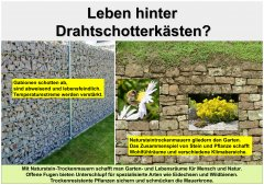 Gartenkultur8_Leben_hinter_Drahtschotterksten_klein.jpg